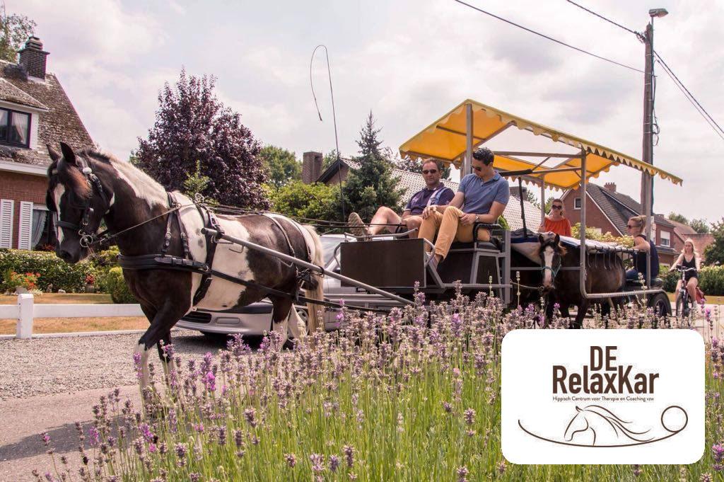 tribe-loading Uitnodiging activiteit: Een ritje met de RelaxKar, een unieke kans! VERPLAATST naar 7 september